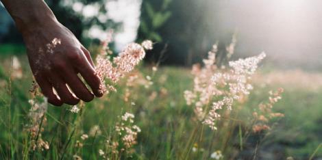 3 съвета за водене на бавен живот и повече енергия за целия ден